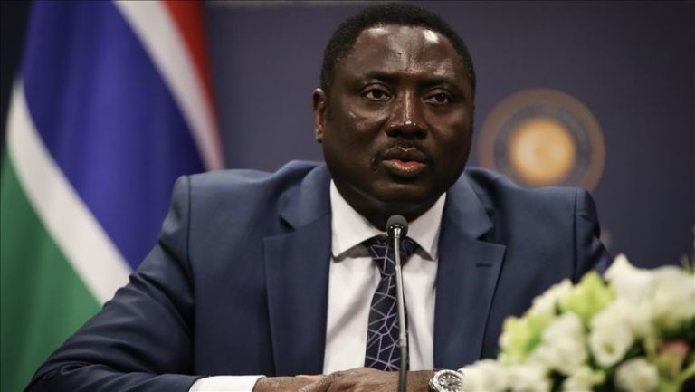 FM Tangara tells Africa summit Barrow government 'understood' reform programmes need to be implemented